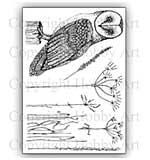 Hobby Art Stamp Set - Oliver Owl