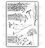 Hobby Art Stamp Set - Janie's Wildflowers