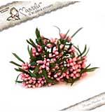 Magnolia LD15 Ring twice Berries - Pink