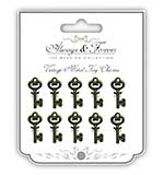 Always and Forever - Small Key Vintage Metal Charms