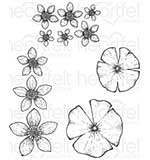 Heartfelt Creations - Water Lily (WF16 Cling Rubber Stamp Set)