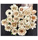 SO: Prima Coy Flowers - Adelle