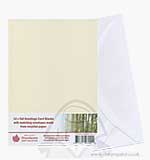 Tall Greetings Card Blanks w/Envelopes - Ivory 12PK