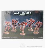 Warhammer 40000 Chaos Space Marine Raptors (5 Models)