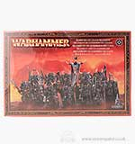 Warhammer Warriors of Chaos Regiment (12 Models)